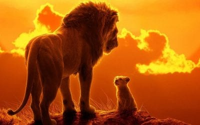 Useful Info – The Lion King at ICBP, Newent